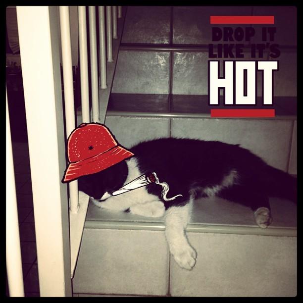 Kiro Gansta: Drop it like it's hot